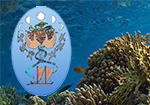 The 13th International Coral Reef Symposium (ICRS)