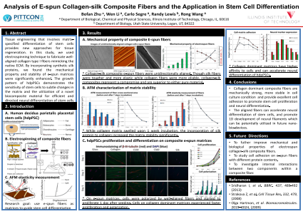 Analysis of E-spun Collagen-silk Composite Fibers and the Application in Stem Cell Differentiation