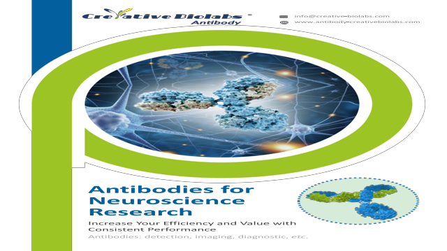 anti gfap antibodies for neuroscience research