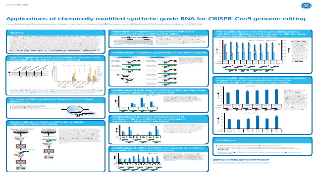 Applications of chemically modified synthetic guide RNA for CRISPR-Cas9 genome editing