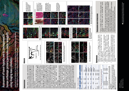 Assessment of tumor hypoxia and its consequences in  human orthotopic primary pancreatic cancer xenografts  using imaging mass cytometry