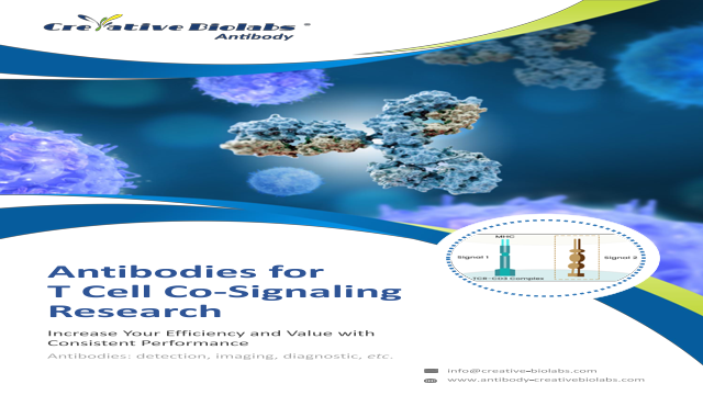 CD96 antibody for t cell co signaling research