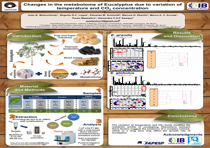 Changes in the metabolome of Eucalyptus due to variation of temperature and CO2 concentration