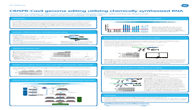 CRISPR-Cas9 genome editing utilizing chemically synthesized RNA
