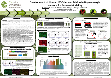 Development of Human iPSC-derived Midbrain Dopaminergic Neurons for Disease Modeling