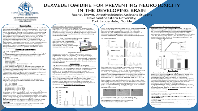 Dexmedetomidine for Preventing Neurotoxicity in the Developing Brain
