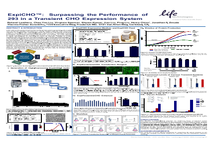 ExpiHO™: Surpassing the Performance of 293 in a Transient CHO Expression System