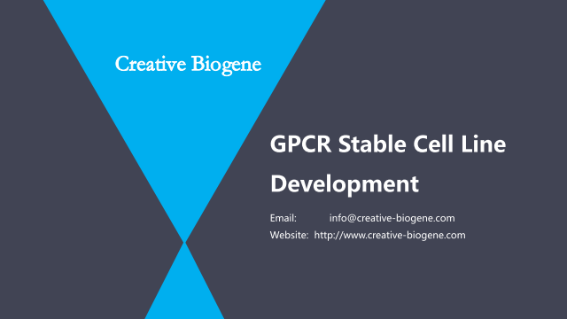 GPCR Stable Cell Line Development