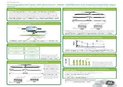 Homology-directed repair with Dharmacon™ Edit-R™ CRISPR-Cas9 and single-stranded DNA oligos