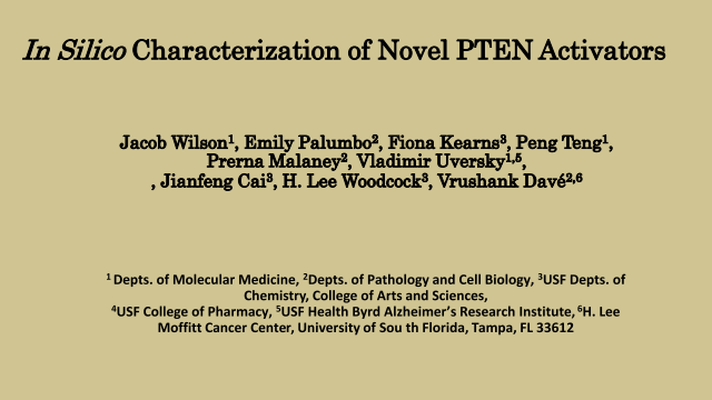 In Silico Characterization of Novel PTEN Activators