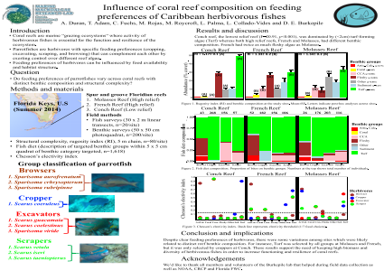 Influence of coral reef composition on feeding preferences of Caribbean herbivorous fishes