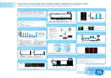 Innovative technology that enables RNAi in difficult to transfect cells