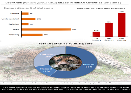 Leopards (Panthera pardus kotiya) Killed in Human activities (2010-2015)