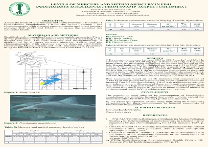 LEVELS OF MERCURY AND METHYLMERCURY IN FISH (PROCHILODUS MAGDALENAE ) FROM SWAMP AYAPEL ( COLOMBIA )