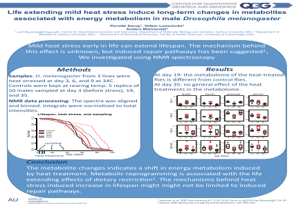 ePosters - Life extending mild heat stress induce long-term