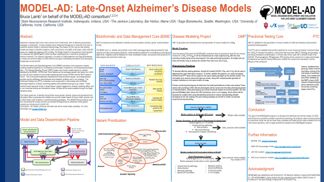 MODEL-AD: Late-Onset Alzheimer's Disease Models