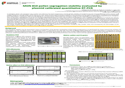 MON 810 pollen segregation stability evaluated by plasmid calibrated quantitative RT-PCR