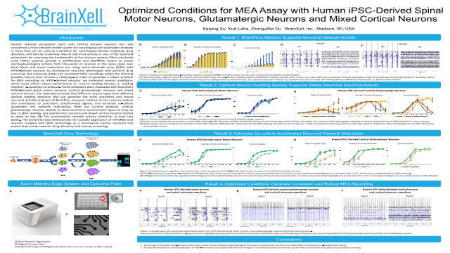 Optimized Conditions for MEA Assay with Human iPSC-Derived Spinal Motor Neurons, Glutamatergic Neurons and Mixed Cortical Neurons