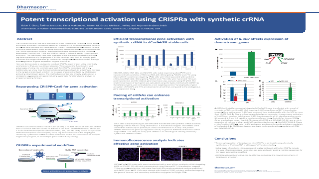 Potent transcriptional activation using CRISPRa with synthetic crRNA