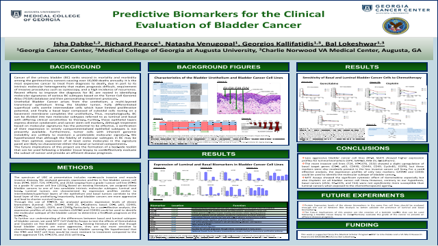 Medical Student: Predictive Biomarkers for the Clinical Evaluation of Bladder Cancer