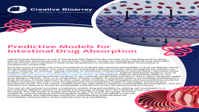Predictive Models for Intestinal Drug Absorption