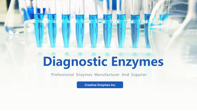 Something You May Want to Learn About Diagnostic Enzymes
