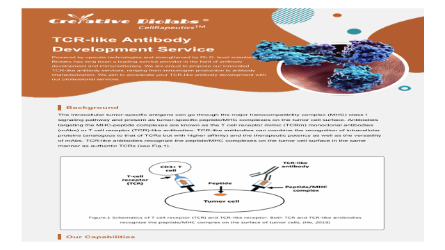 TCR-like Antibody Development Service_Creative Biolabs