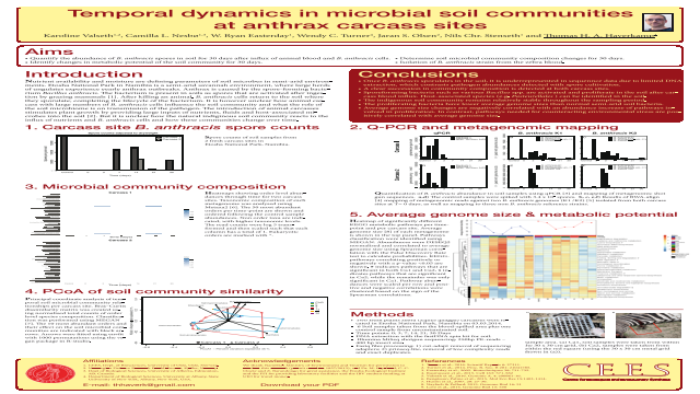 Temporal dynamics in microbial soil communities at anthrax carcass sites.
