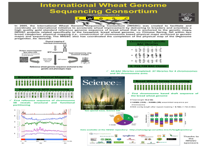 The International Wheat genome Sequencing Consortium (IWGSC)