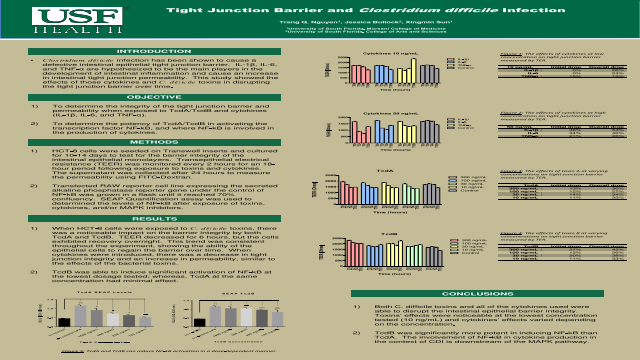Tight Junction Barrier and Clostridium difficile Infection