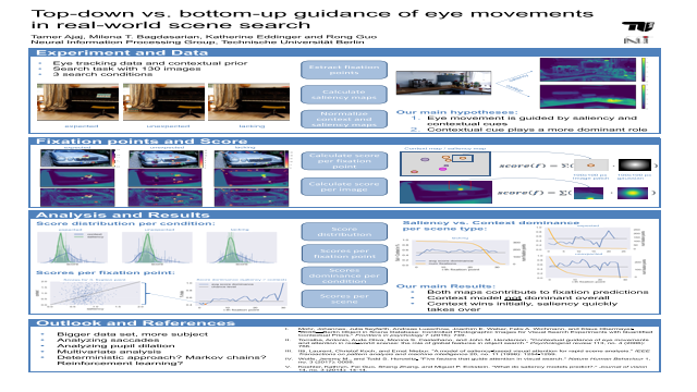 Top-down vs. bottom-up guidance of eye movements in real-world scene search