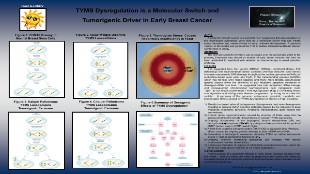 TYMS Dysregulation is a Molecular Switch and Tumorigenic Driver in Early Breast Cancer
