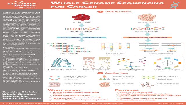 Whole Genome Sequence for Cancer