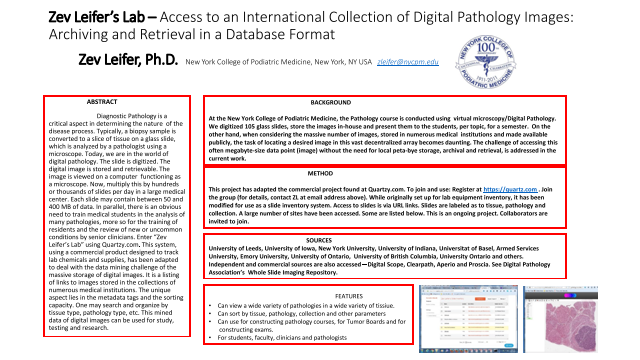 Zev Leifer's Lab –Access to an International Collection of Digital Pathology Images: Archiving and Retrieval in a Database Format